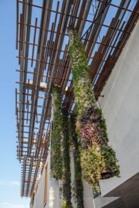 Detail Vertical Gardens